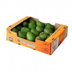 Avocado Box 4kg